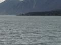 AlaskaCruise #3