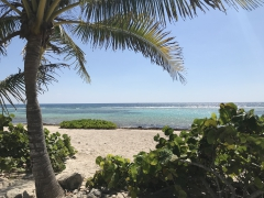 Caribbean Cruise Getaway 2018