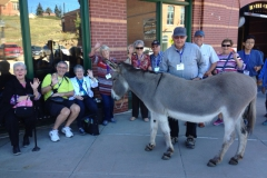 Group with Donkey