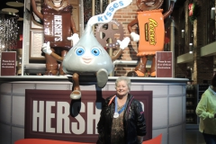 Hershey's Chocolate Factory 3