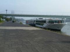 Rhine River Cruise 2017