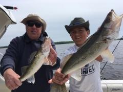 Trophy Walleye Fishing  Spring 2018